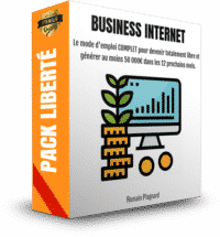 Business Internet 50000euros Par An